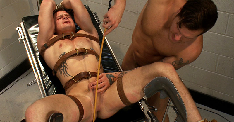 gay for pay web site