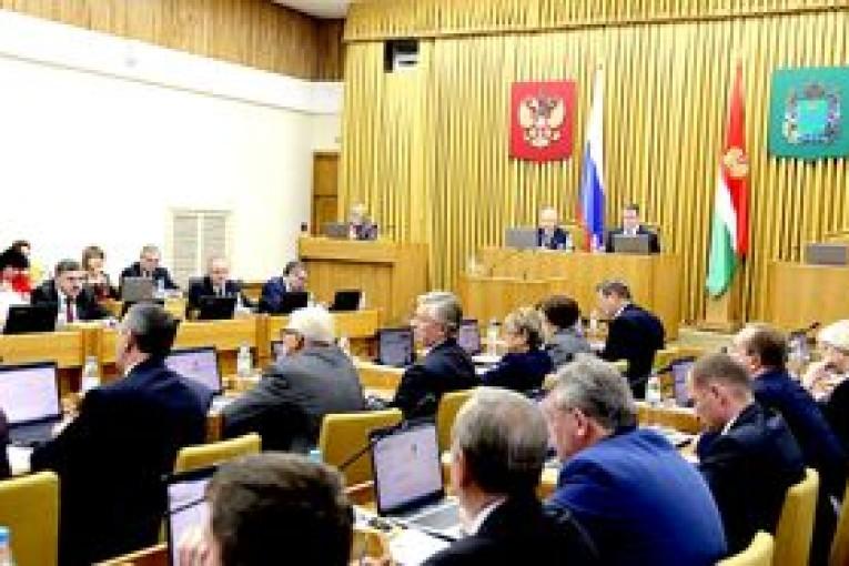 Депутаты областного парламента приняли  ряд законов в поддержку инвалидов,  детей-сирот и многодетных семей