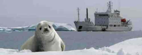 artic-cruise-ship.jpg