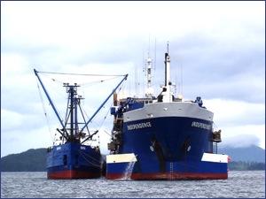 Triton Seafod Ship Dolphin Spilling Oil in Alaska