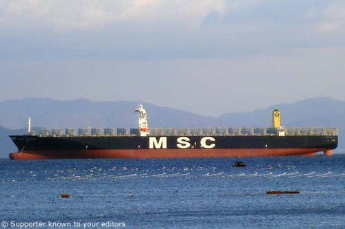 msc-daniela