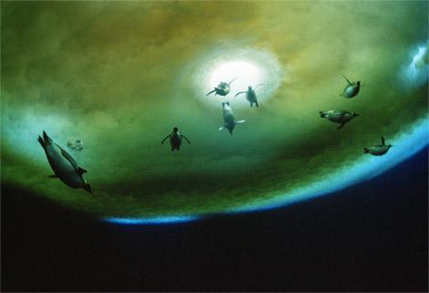 penguins-underwater-antarctica-052709-ga