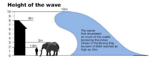 Height Of Tsunami Wave