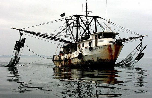 illegal fishing boat gabon trawler