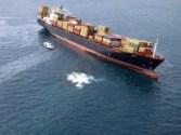 Krill Swarms Spark MV Rena Oil Spill Scare