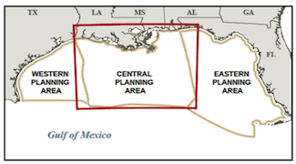 The central planning area of the U.S. Gulf of Mexico. Image: BOEM