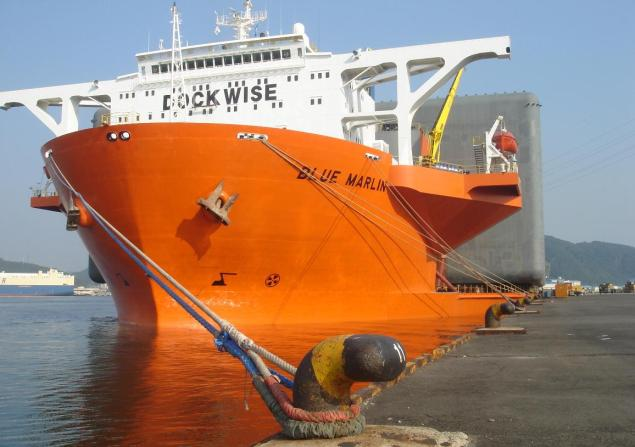 dockwise blue marlin