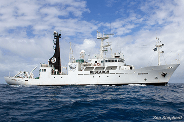 In December, Sea Shepherd unveiled their latest ship, the SSS Sam Simon, which last week was used to locate the Japanese whaling fleet's refueling tanker and prevent it from reaching the whalers. Photo: Sea Shepherd Conservation Society