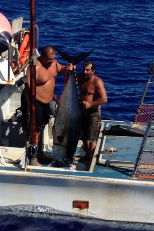 The tuna. U.S. Coast Guard photo