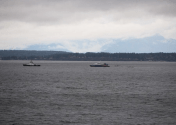 Man Arrested After Stealing Victoria Clipper High-Speed Ferry in Seattle
