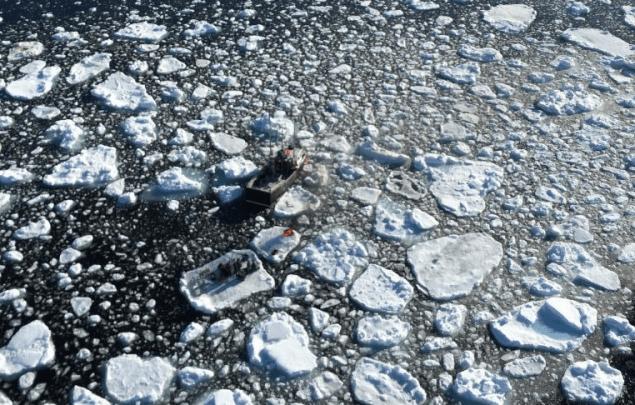 icy newfoundland rescue