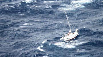 sailboat Walkabout julio