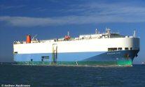 U.S. Coast Guard MEDEVACs Mariner Aboard M/V Cougar Ace