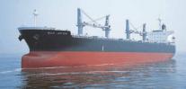 Gearbulk-Owned Ore Carrier Sinks Off Vietnam