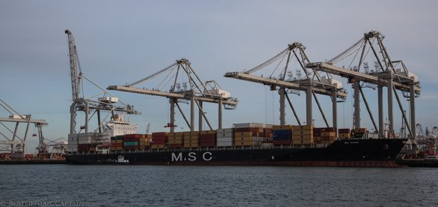 msc containership rotterdam