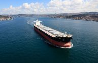 Baltic Dry Index Snaps 9-day Winning Streak on Weaker Capesize Rates