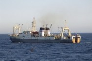 Russian Trawler Was Sunk by Greed and Corruption, Investigators Say