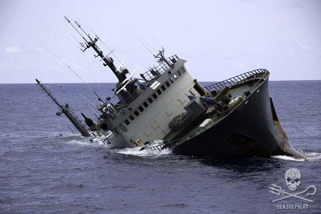 Photo: Simon Ager/Sea Shepherd