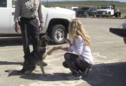 Dog Believed Lost at Sea Turns Up on U.S. Navy Island After Five Weeks