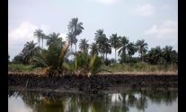 Anger in the Delta keeps oil majors quiet – and Nigeria's crude offline
