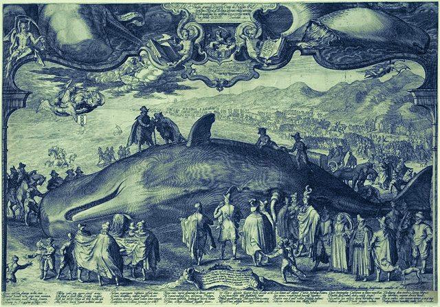 whale omen