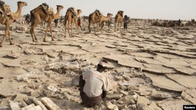 A worker extracts salt from the desert in the Danakil Depression, northern Ethiopia, April 22, 2013.