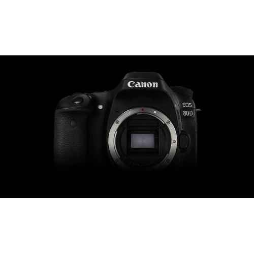 Medium Crop Of Canon 80d Body