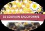 Fiche_1_couvain_sacciforme2