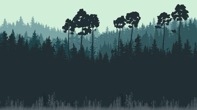 monotypeforest
