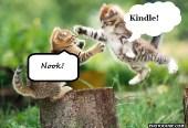 flying-cat-fight