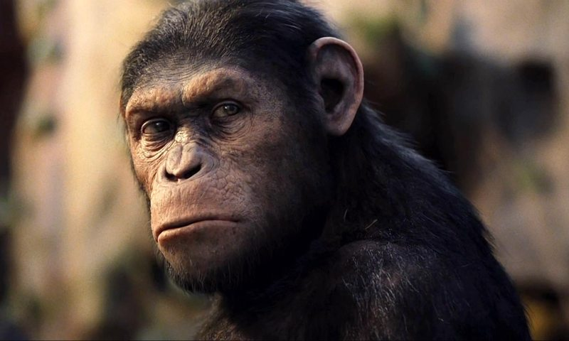 Rise_of_the_Planet_of_the_Apes-101
