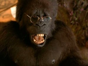 George-ape