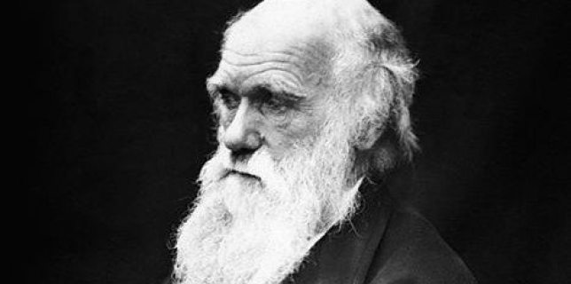 467px-Charles_Darwin_01 Public Domain small