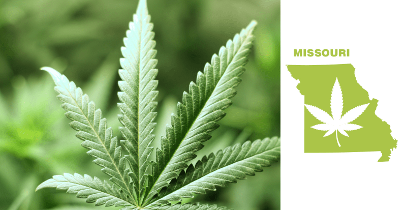 Why the Medical Marijuana Bill Bottomed Out in Missouri House