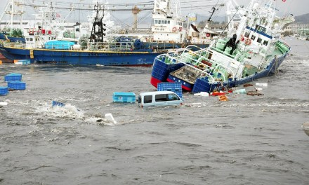 ¿Cómo sobrevivir un tsunami?