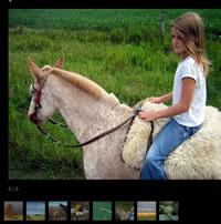 Cómo crear Galerías de fotos en tus entradas de WordPress