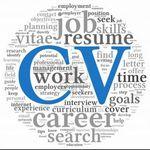 Mi-Curriculum-Vitae, aplicación web que fácilmente y gratis te permite crear tu CV