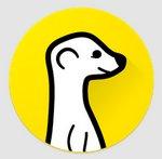 Meerkat ahora permite incrustar reproductor de transmisiones en páginas web y blogs
