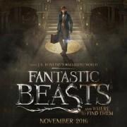 geekstra-fantastic-beasts