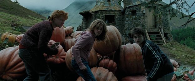Harry Potter Prisoner of Azkaban 3
