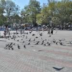 Ярмарочная площадь