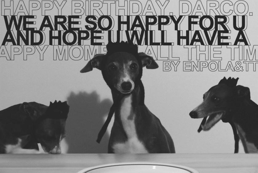 Darco's 3rd birthday
