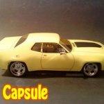 Capsule2