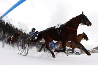 White Turf Race