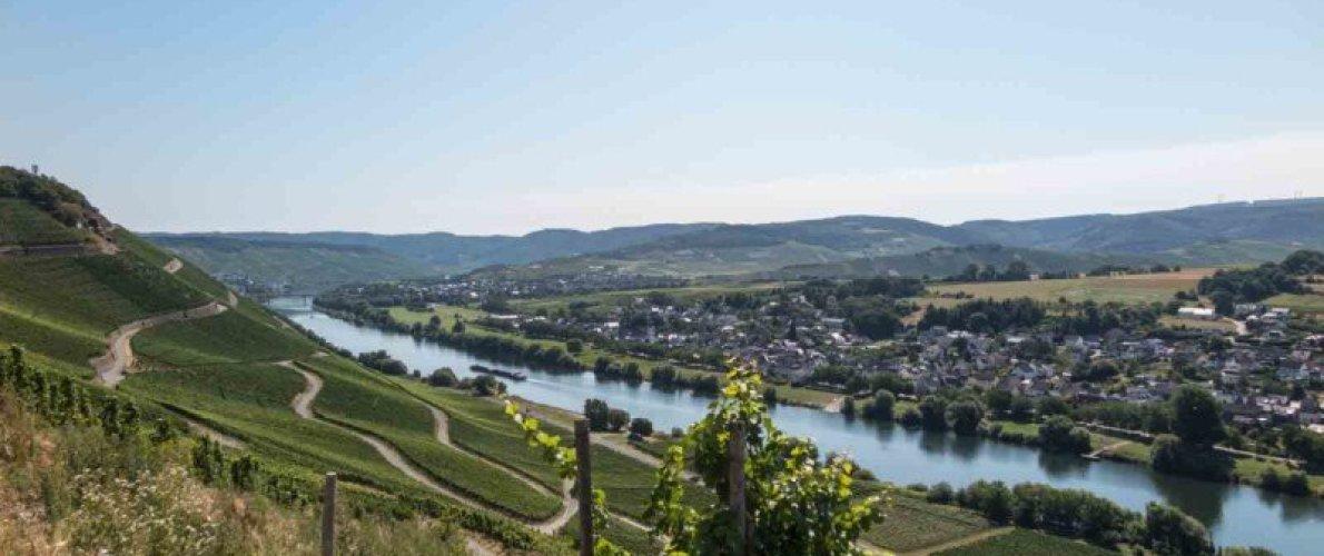 Über den Moselsteig von Kesten nach Bernkastel-Kues