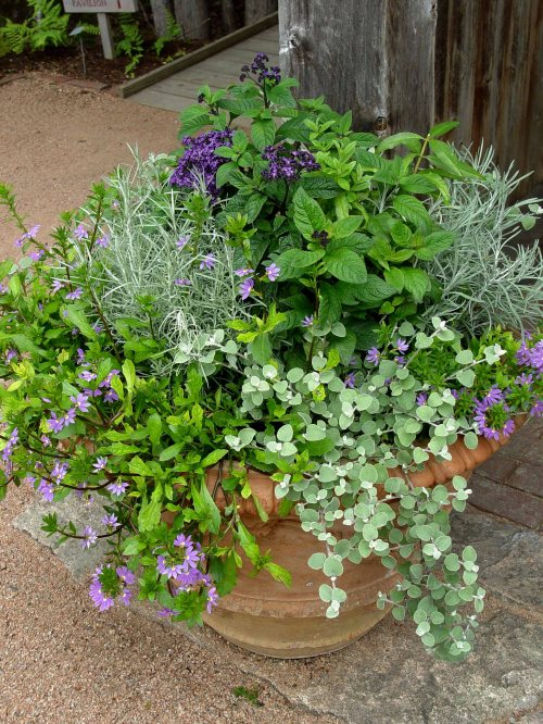 Medium Of Creative Garden Containers