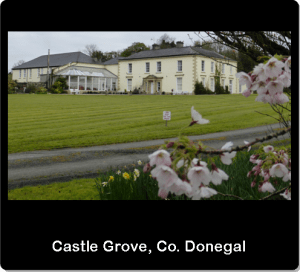 Castle Grove, Co. Donegal