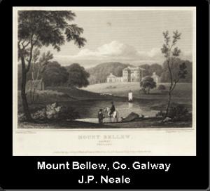 2. Mount Bellew