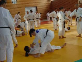 stage national judo (5)