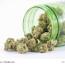 Cannabis auf Rezept – Krankenkasse muss zahlen!